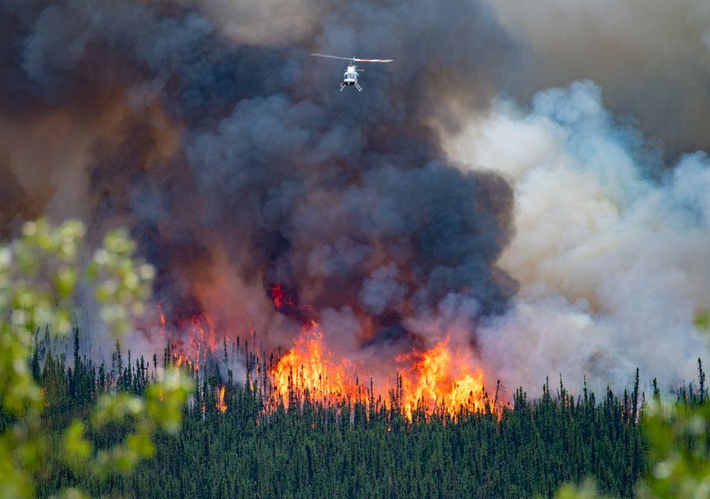 incêndio florestal; temperaturas elevadas;