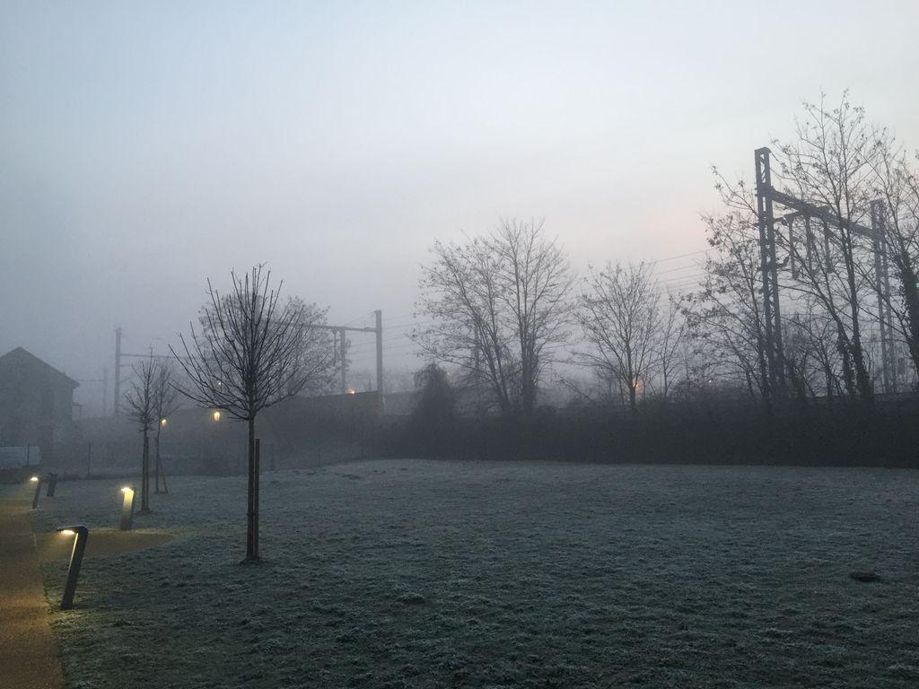 Du brouillard, du froid voire des gelées blanches, l'automne démarre fort cette année !
