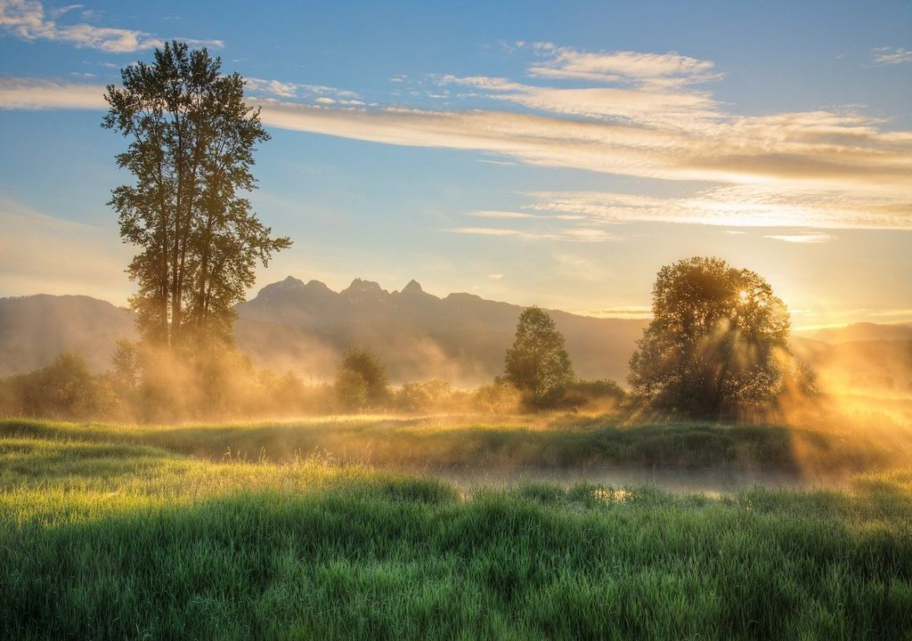 Clear skies and cold nights lead to patches of mist, fog and frost