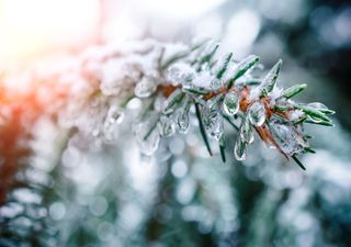 Temperatursturz an Heiligabend: Was kommt da wirklich auf uns zu?