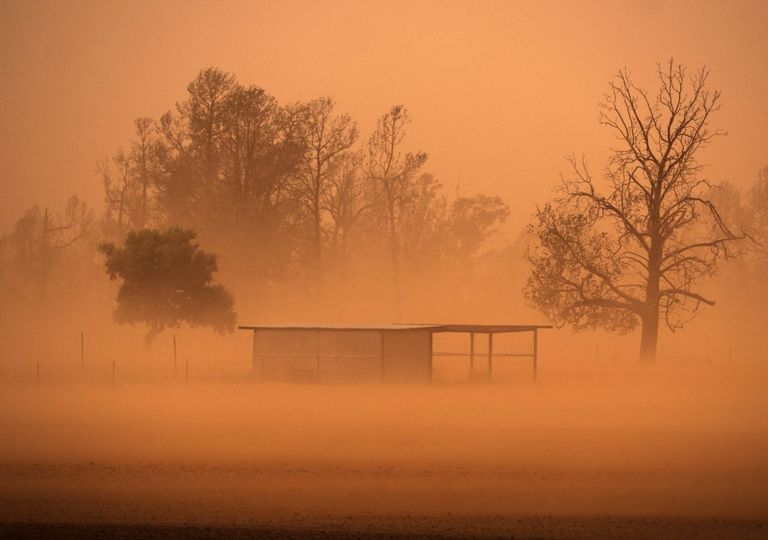 Baixa qualidade do ar e de visibilidade numa tempestade de areia.