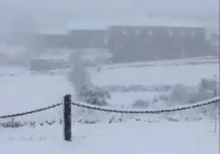 Tempestade Dora: veja aqui as fotos do nevão!