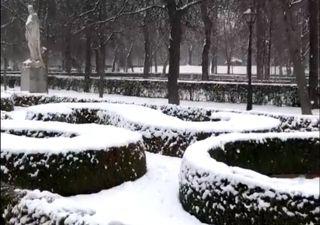 Tempestade Filomena: as imagens do nevão em Espanha