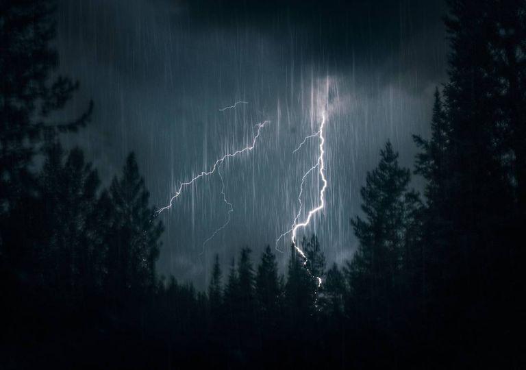 trovoada noite floresta chuva