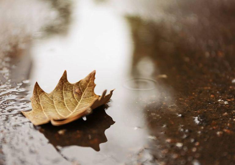chuva; outono; ar polar;
