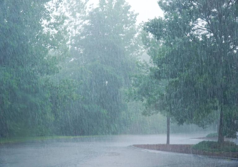chuva; vento;