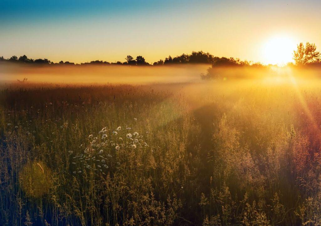 Sol; nevoeiro