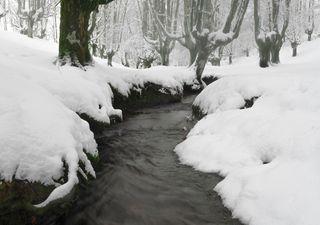 El temporal dejará nevadas excepcionales, lluvias y viento
