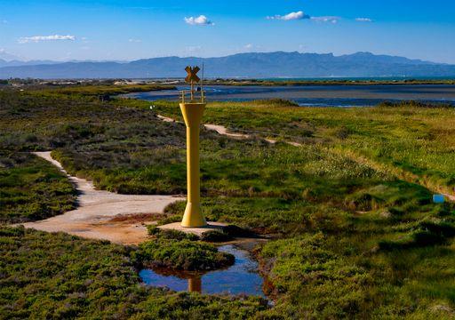 Temporales que acaban de rematar el Delta del Ebro