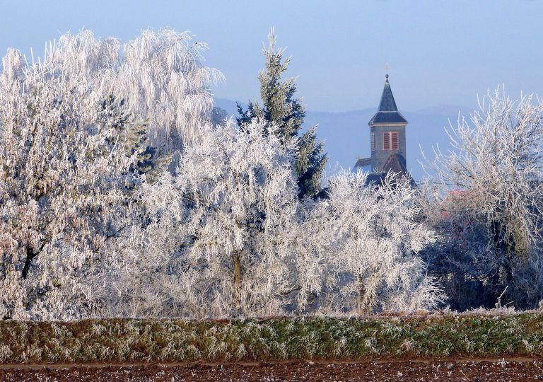Les gelées seront très marquées en matinée en Alsace ce week-end.