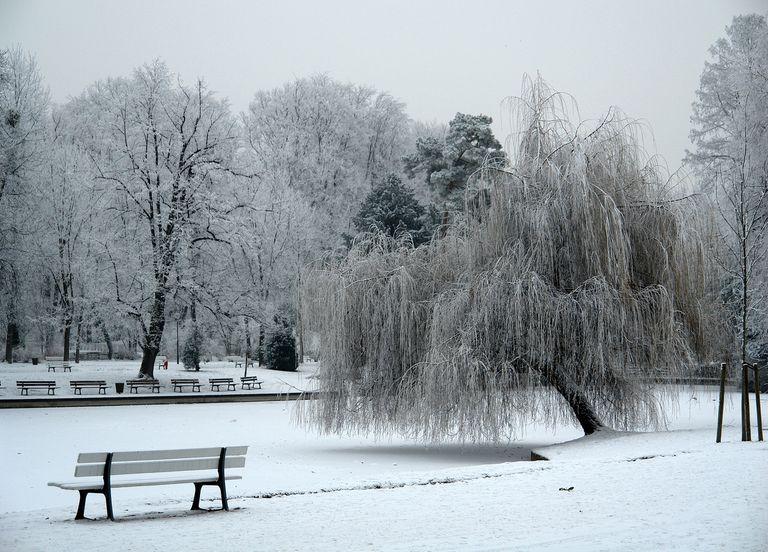 Strasbourg neige