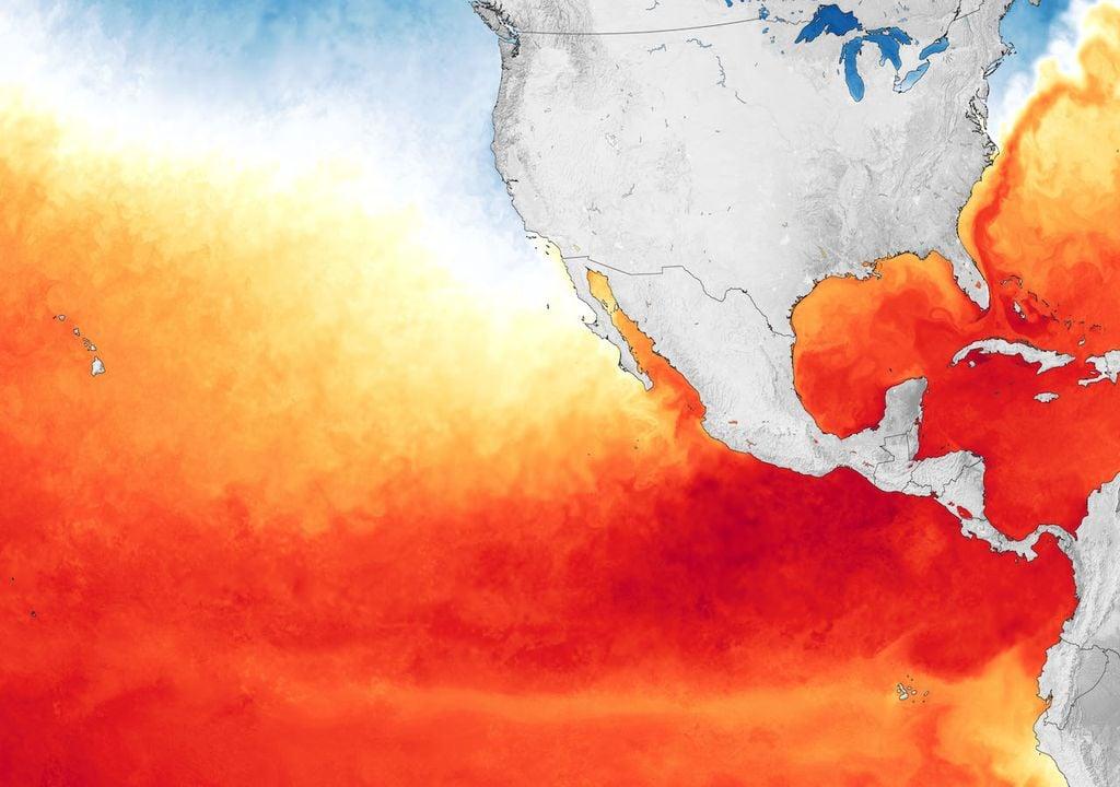 Temperaturas de la superficie del mar; Pacífico