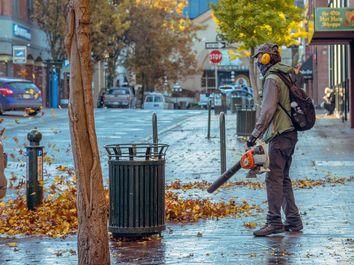El enemigo público de la vida moderna: los sopladores de hojas