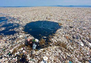 Exterminarán una isla para ayudar al planeta
