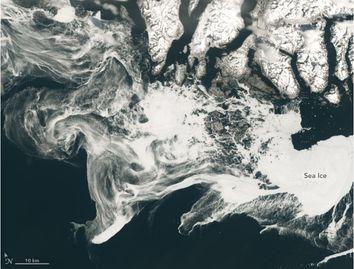 La belleza helada de nuestro planeta