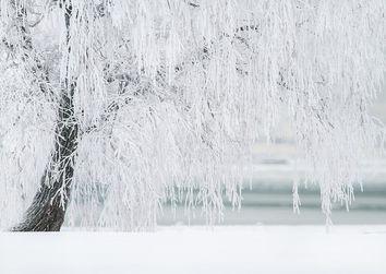 Aspettando Il Grande Freddo Neve Al Centro Nord E Forti Temporali