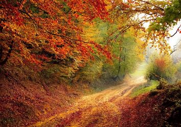Le previsioni meteo stagionali per l'autunno