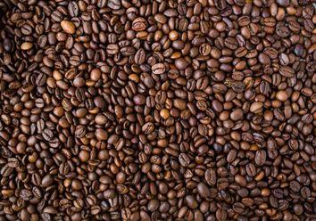 O café e as mudanças climáticas