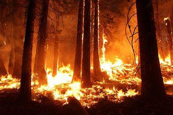 Precaución, el máximo riesgo de incendios ya está aquí