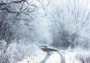 Temperaturen stürzen nach unten: Nächste Woche Schnee!