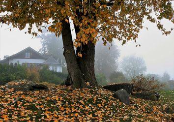 Temperatursturz um bis zu 20 Grad - bleibt das kühle Herbstwetter?