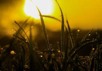 Tempo esta semana: calor continua com alguns aguaceiros e trovoada
