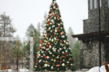 Tiempo de Navidad y Año Nuevo... ¿con cambios a la vista?