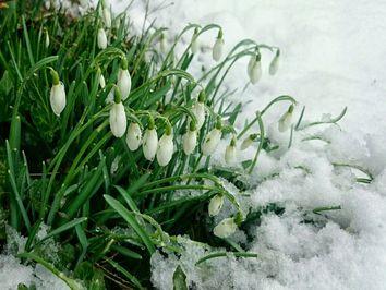 Wochenwetter: Kommt der Winter zurück?