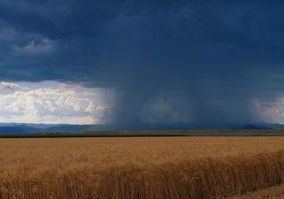 Tipos de precipitaciones: ¿Qué diferencia al chubasco de las lluvias?