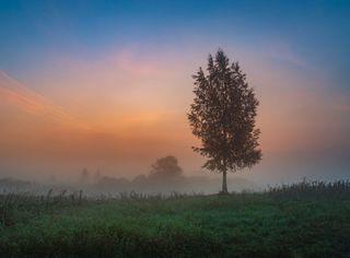 Tipos y nombres de nieblas: ¿los conoces todos?