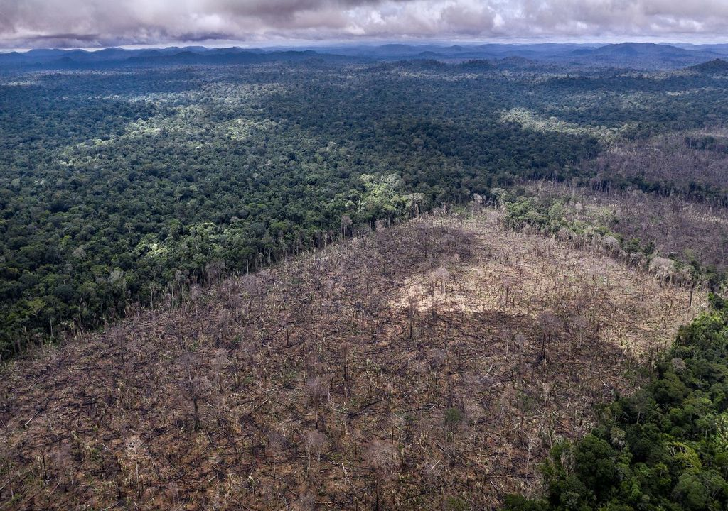 Deforestation in Brazil, © Marizilda Cruppe / WWF-UK