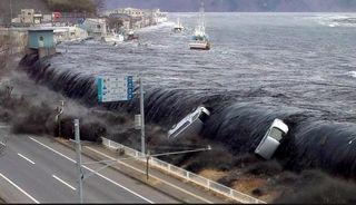 """""""Tsunami"""" cerebral y muerte"""