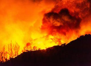 Türkei: Tausende sind durch die Waldbrände obdachlos geworden!