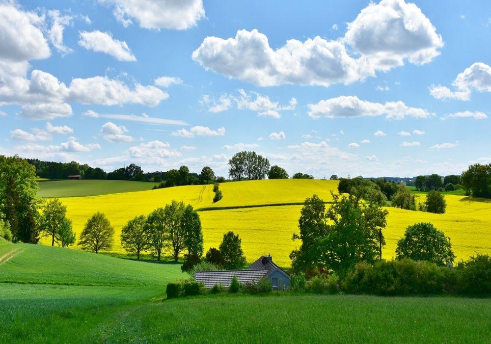 Über 30 Grad: Der Sommer Läuft Bald Zur Hochform Auf