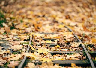 The weather outlook for the rest of October: strong winds
