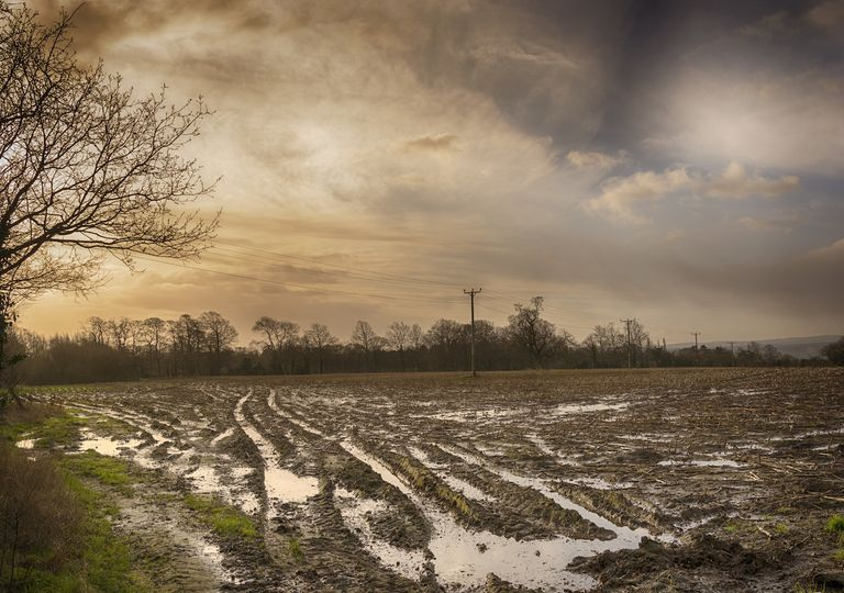 Flooded field in the UK countryside.