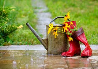 UK weather this week: Good news for gardeners