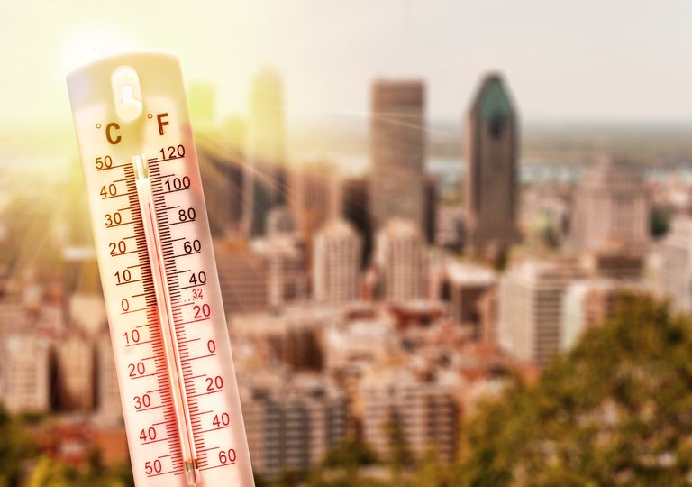 trimestre caluroso NOAA récord verano invierno