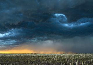 Umidade se organiza melhor e chuvas volumosas atingem o CO e o SE