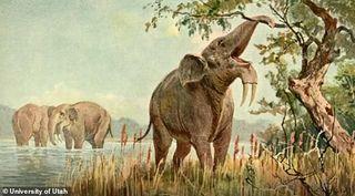 Un cambio ambiental pudo acabar con los grandes herbívoros en África