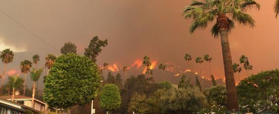 Un Mundo Más Cálido, Con Más Rayos E Incendios Forestales