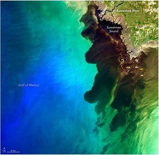 Un río de aguas negras se encuentra con el mar