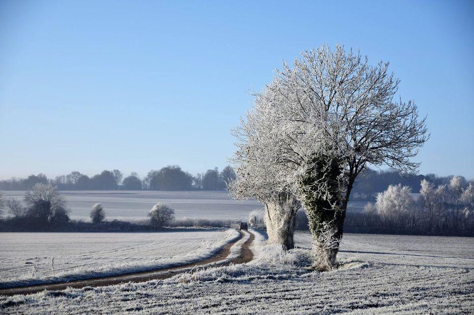 Un risque de neige en plaine pour ce week-end