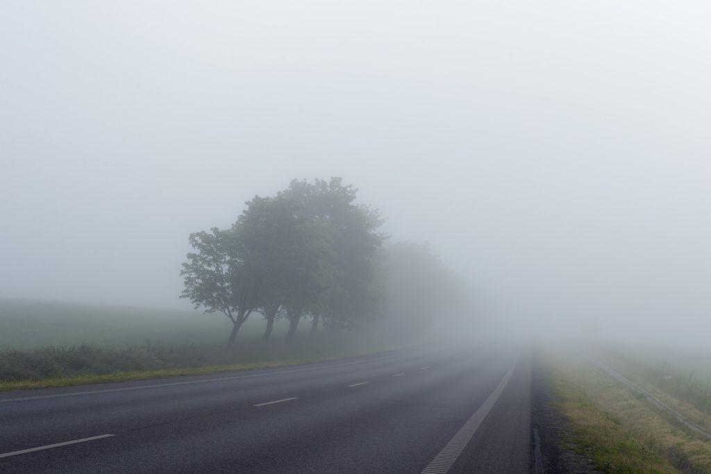 Les brouillards seront parfois tenaces ce samedi dans l'est et le sud-ouest.