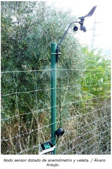 Una Red De Sensores Contra Los Incendios Forestales