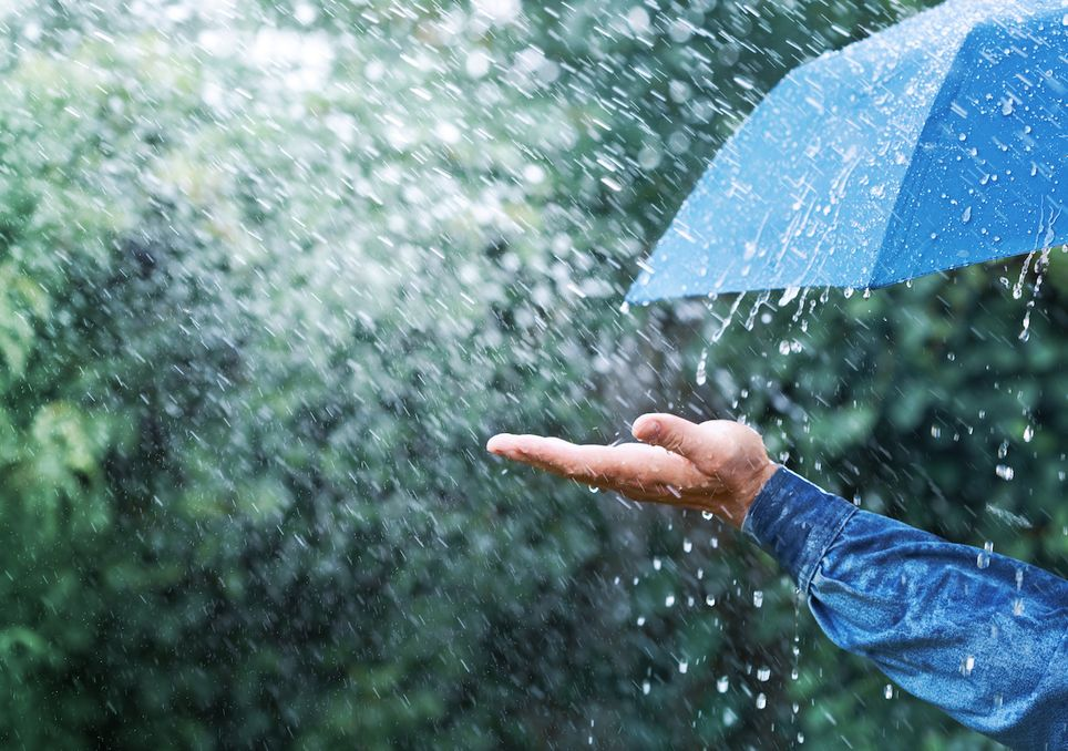 A low pressure system will bring strong winds and heavy rain on Monday.