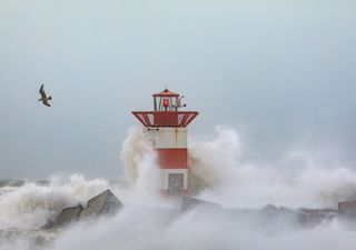 Unwetterwarnung: Heftiger Sturzregen und schwerer Sturm am Mittwoch!