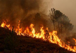 Verano 2020: ¡alerta incendios!