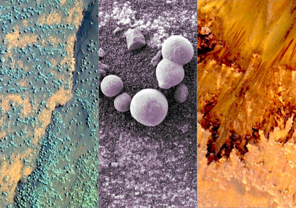 Vida em Marte: Há fungos vivendo no planeta vermelho?