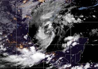 Vigilancia de los ciclones Veintidós, Sally, Teddy y Vicky